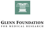 Glenn Foundation